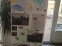 Projekt Den Země